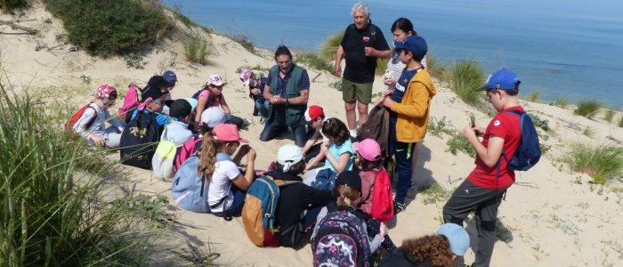 Classe découverte Faune et Flore des dunes - Centre de Soulac sur mer