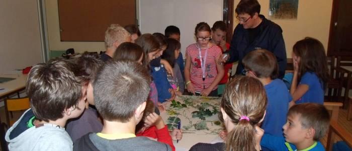 Scéance de découverte - Classe Verte écologique - Centre de Séjour Soulac sur Mer