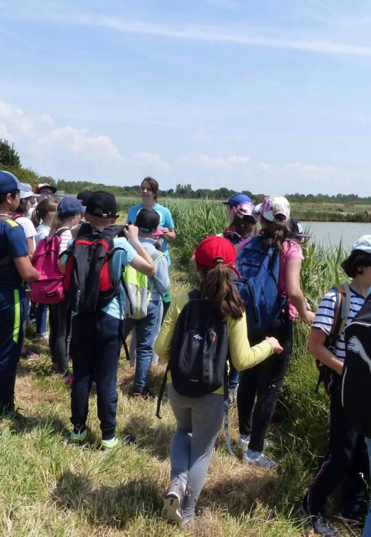 Les enfants en classe verte, découverte de l'écosystème - Centre de Séjour Soulac sur mer